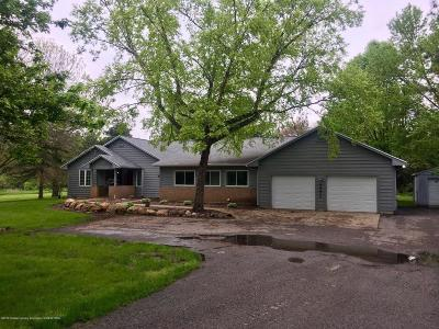 Lansing Single Family Home For Sale: 3950 Delta River Drive