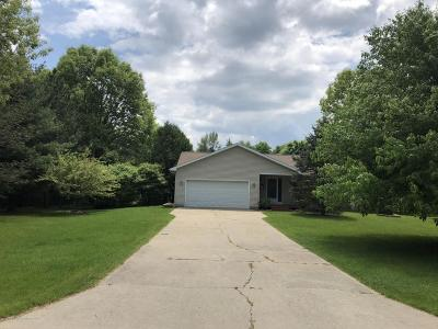 Haslett Single Family Home For Sale: 9850 Missaukee