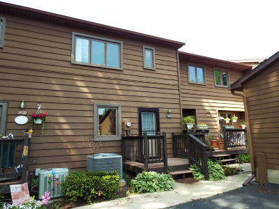 East Lansing Condo/Townhouse For Sale: 1402 Fortune Drive #13