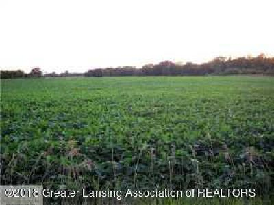 Webberville Residential Lots & Land For Sale: 1911 N Gramer Road