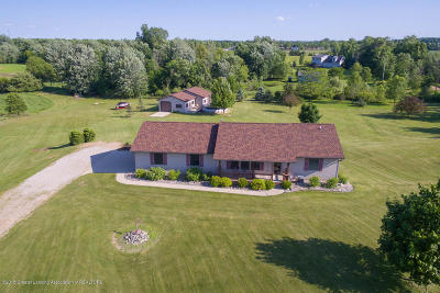 Eagle Single Family Home For Sale: 9905 W Cutler Road