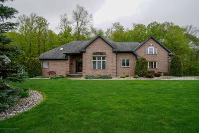Grand Ledge Single Family Home For Sale: 4054 Tall Oaks Drive