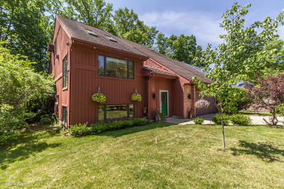 Haslett Single Family Home For Sale: 1107 Woodwind Trail