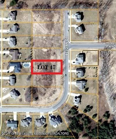 Lansing Residential Lots & Land For Sale: Lot 47 Belgian Drive
