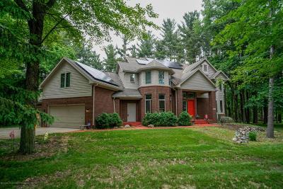 Okemos Single Family Home For Sale: 4695 Wellington Drive