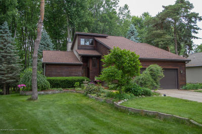 Dewitt Single Family Home For Sale: 3748 W Herbison Road