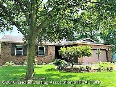 Haslett Single Family Home For Sale: 873 Moss Glen Circle