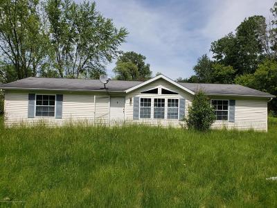 Mason Single Family Home For Sale: 3071 S Edgar Road