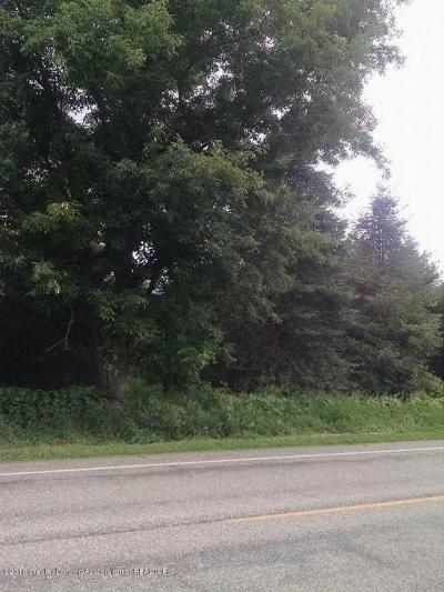 Charlotte Residential Lots & Land For Sale: Parcel A Island Highway