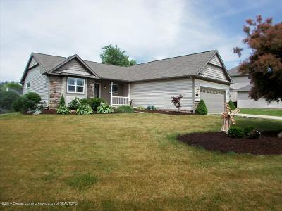 Dewitt MI Single Family Home For Sale: $299,900