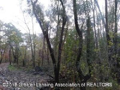 Lansing Residential Lots & Land For Sale: 15851 Turner Road