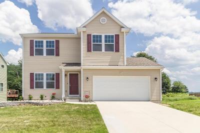 Mason Single Family Home For Sale: 67 Lake Ridge Drive
