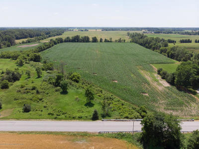 Williamston Residential Lots & Land For Sale: Parcel B Holt Road