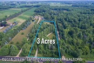 Dewitt Residential Lots & Land For Sale: 1545 E Round Lake Road