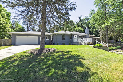 Okemos Single Family Home For Sale: 4534 Ethel Street