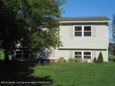 Grand Ledge Single Family Home For Sale: 10626 S Hartel Road