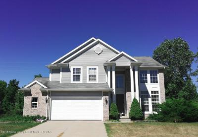 Okemos Single Family Home For Sale: 5351 Burcham Drive