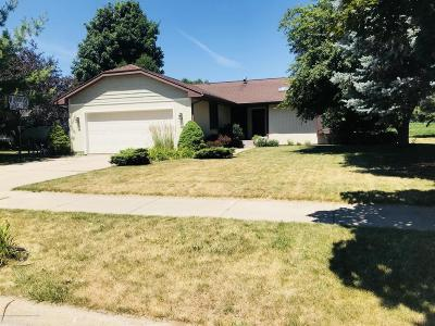 Dewitt MI Single Family Home For Sale: $209,900