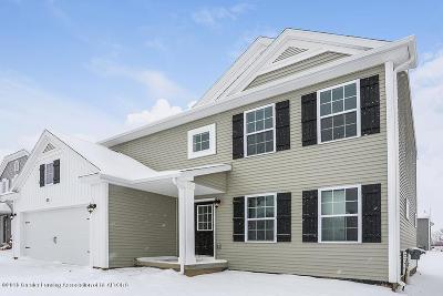 Grand Ledge Single Family Home For Sale: 1013 Chesham Lane