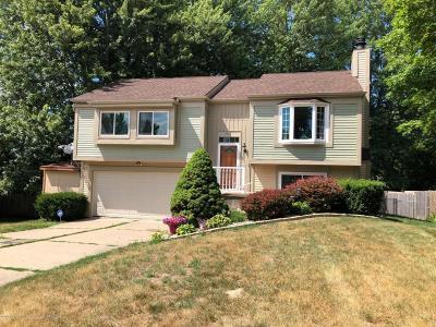 Lansing Single Family Home For Sale: 5114 Grape Arbor Lane