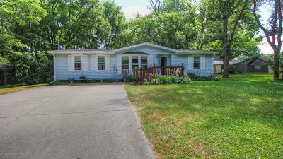 Lansing Single Family Home For Sale: 16963 Northdale Road