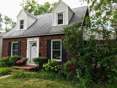 Lansing Single Family Home For Sale: 573 Paris Avenue