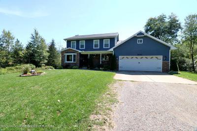 Williamston Single Family Home For Sale: 1642 Sorg Drive
