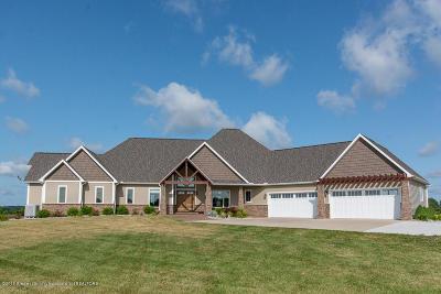 Mason Single Family Home For Sale: 147 Hanna Road