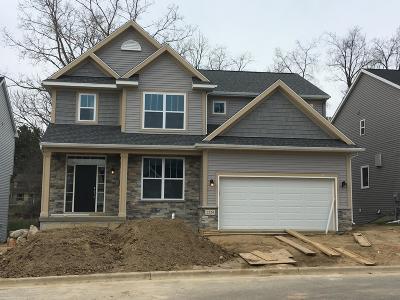 Okemos Single Family Home For Sale: 1424 Kalorama Way