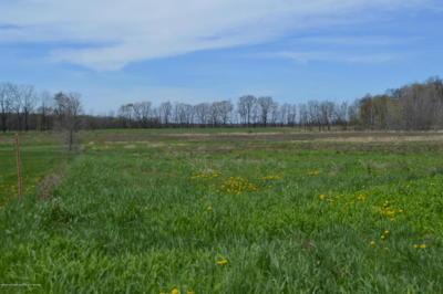 Webberville Residential Lots & Land For Sale: S Kane Road
