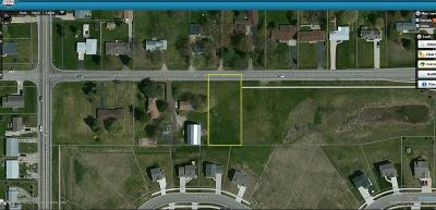 Lansing Residential Lots & Land For Sale: Dell Road