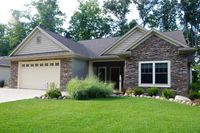 Dewitt MI Single Family Home For Sale: $385,000