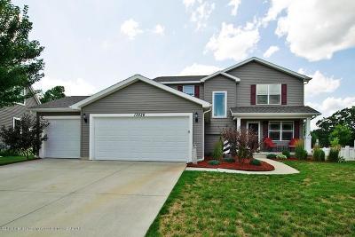 Dewitt MI Single Family Home For Sale: $252,900