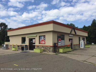 Commercial For Sale: 743 W Grand River Avenue