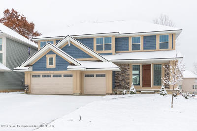 Haslett Single Family Home For Sale: 16943 Willowbrook Drive