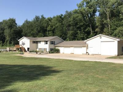 Charlotte MI Single Family Home For Sale: $239,900