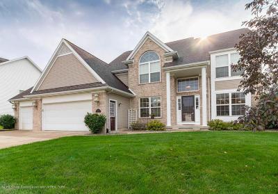 Williamston Single Family Home For Sale: 1065 Foxborough Drive