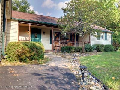 East Lansing Single Family Home For Sale: 6034 Hardy Avenue