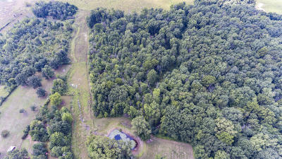 Grand Ledge Residential Lots & Land For Sale: 0-10471 N Royston Road