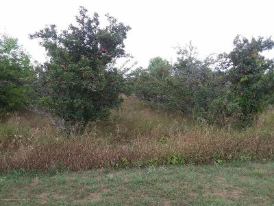 St. Johns Residential Lots & Land For Sale: 7010 Jonathan Court