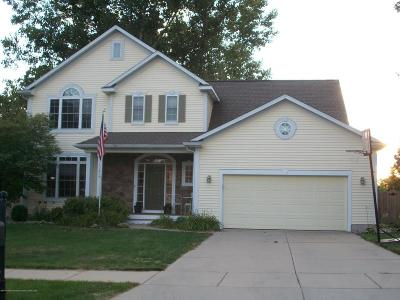Grand Ledge Single Family Home For Sale: 11245 Jerryson Drive