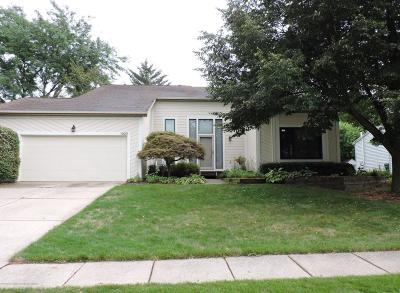 Lansing Single Family Home For Sale: 1033 Alexandria Drive