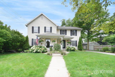 Williamston Multi Family Home For Sale: 119 & 121 E Church Street