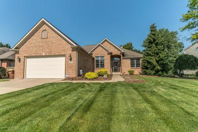 Haslett Single Family Home For Sale: 5585 Wild Iris Lane