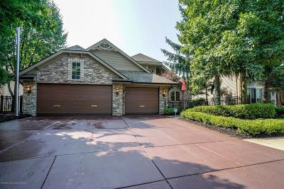 Haslett Single Family Home For Sale: 7930 Ashbrook Drive