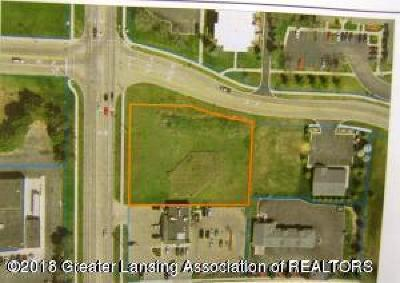 Lansing Residential Lots & Land For Sale: 942 N Elmwood Road