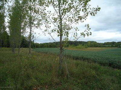 Bellevue MI Residential Lots & Land For Sale: $489,900