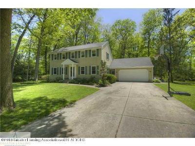 Williamston Single Family Home For Sale: 130 Granite Drive