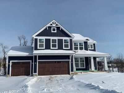 Dewitt MI Single Family Home For Sale: $449,800
