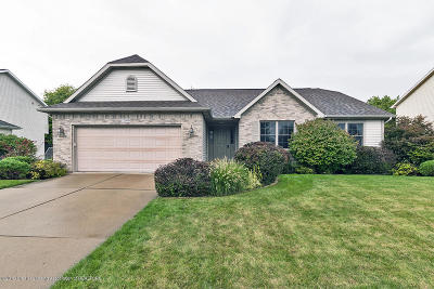 Dewitt Single Family Home For Sale: 12930 Chartreuse Drive
